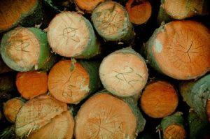 Warum eine Gartengarnitur aus Holz?